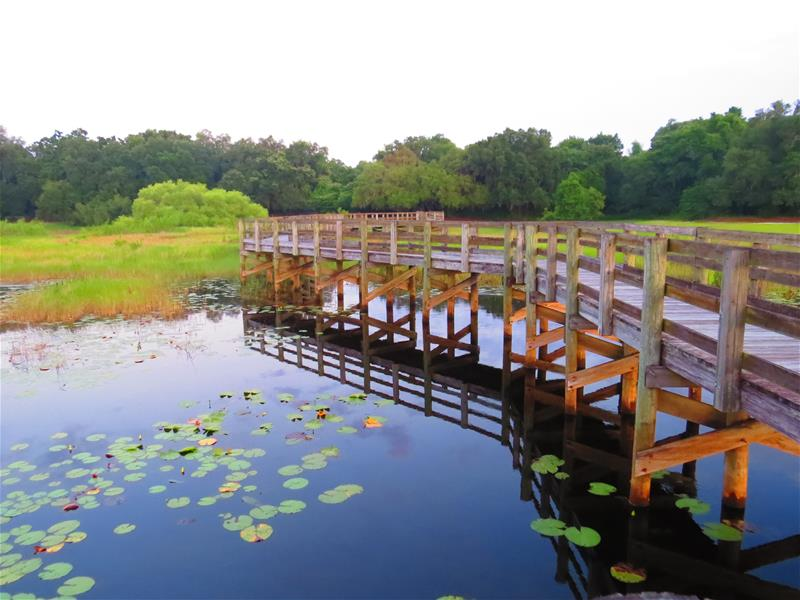 Exploring Pasco County Parks and Natural Resources